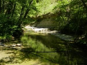 Palazzuolo - Verso la sorgente del Senio.