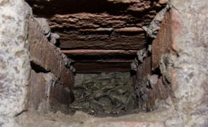 Tebano - Finestra della camera di raccolta dell'acqua dalla quale esce l'acqua della falda Tebano